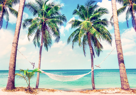 bahama: Beautiful beach. View of nice tropical beach with palms around. Holiday and vacation concept.  Tropical beach. Beautiful tropical island in Thailand. Stock Photo