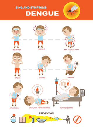 Dengue fever symptoms infographics