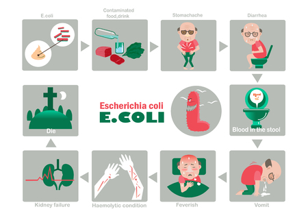 Symptom of patients Escherichia coli illustration.