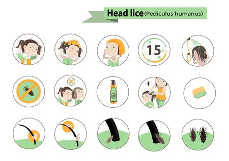 Head lice in circle vector Illustration. Vettoriali