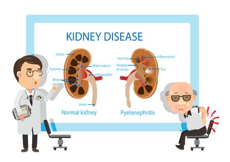 Patienten und Ärzte , die Diagramme betrachten . Vektor-Illustration Vektorgrafik