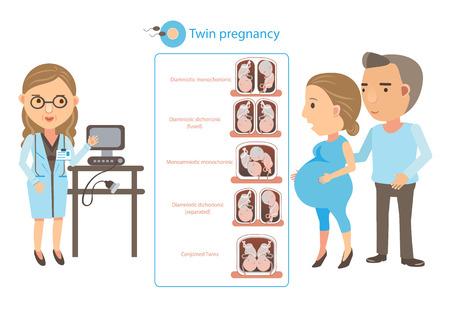 doctor explained twin pregnancy. Cartoon vector illustration.  イラスト・ベクター素材