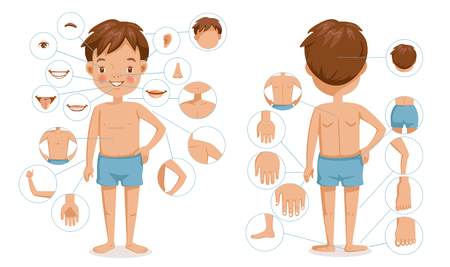 Boy body front view and rear view. Children with different parts of the body for teaching. Body details.The diagram shows the various external Ilustração
