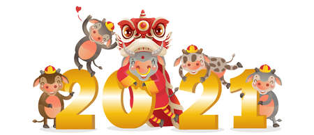 Chinese New Year 2021.Dancing lion head and numbers 2021 gold. Zodiac character chinese style. Year of the ox cow and calf holding numbers. Chinese new year greeting. Design for the new year cards.