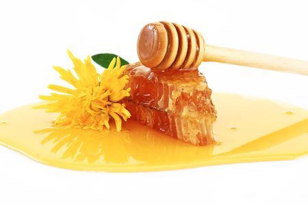 colmena: Abeja de miel sobre un fondo blanco  Foto de archivo
