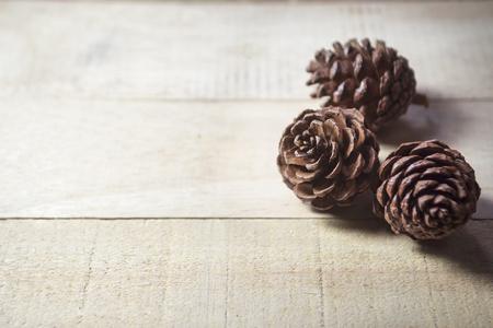 lobe: pine cones Stock Photo