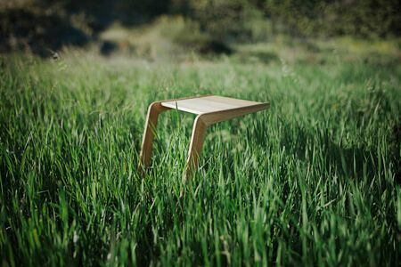 Wood minimalistic coffee table on grass Foto de archivo - 125475411