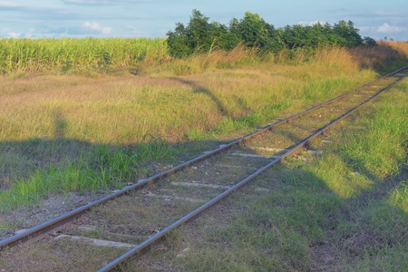 Overgrown with grass, the abandoned railway tracks run through t Stock fotó