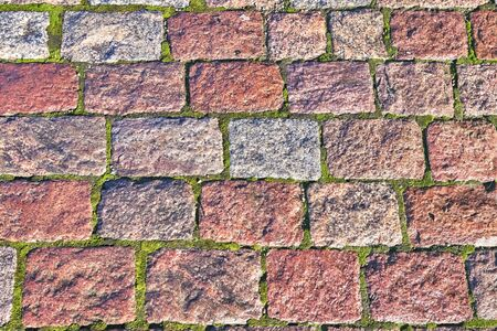Background of granite rectangles laid with green moss, pavement 写真素材