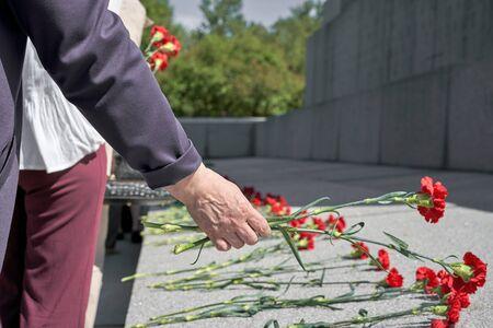 Une main met des œillets rouges sur une pierre tombale en granit. Mémoire des morts