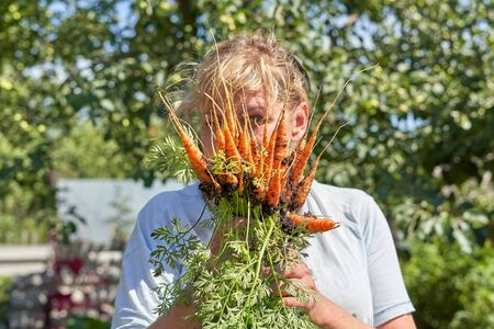 The girl covered her face with a harvest of carrots with green tops. A bunch of red carrots with land in the hands of a woman Foto de archivo - 133473519