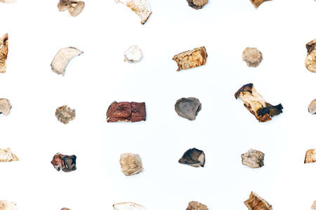 A pattern of pieces of dried mushrooms scattered with lines on a light background. View from