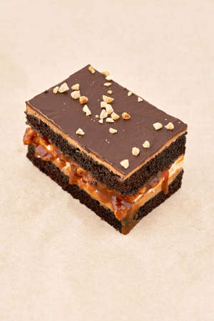 Dark biscuit cake with a layer of cream and chocolate fondant, sprinkled with grated nuts, vertical frame