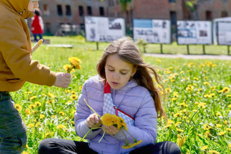 Little boy with his sister pick yellow dandelions while sitting Standard-Bild