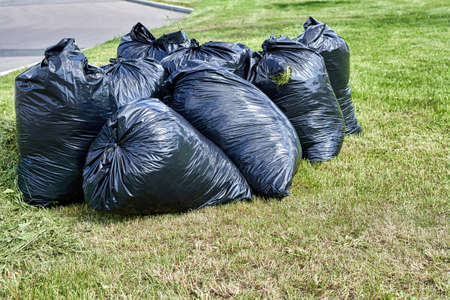 Black garbage bags are filled with cut grass after mowing the lawn