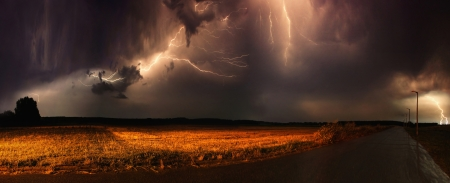 storm sky: Huge thunders in a field in the evening.