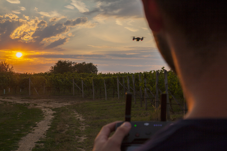 man controls drone remote while sun dawn next to vineyard