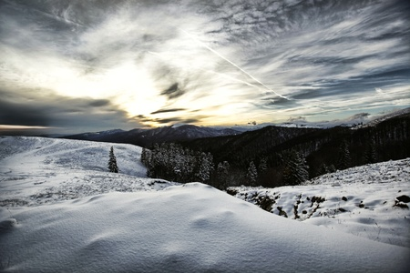 Winter wonderland scenery with trees covered in snow and a dramatic cloudy sky inthe sunset. Stock Photo