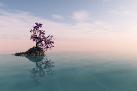 the long lake: A lonely tree with reflection in the water