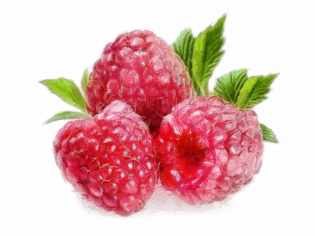 ilustration: C.G.I. made Painting of three raspberries with leaves (collection of fruit)