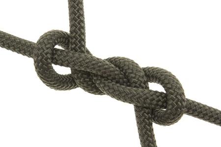 firmeza: goldobin nudo. aisladas sobre fondo blanco