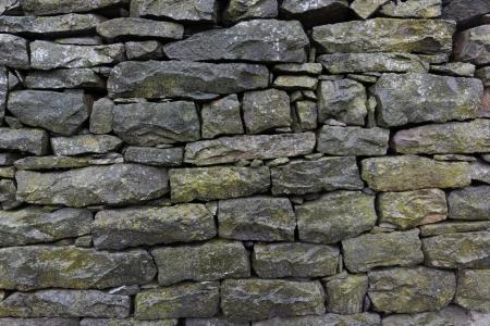 mossy wet stone wall background photo
