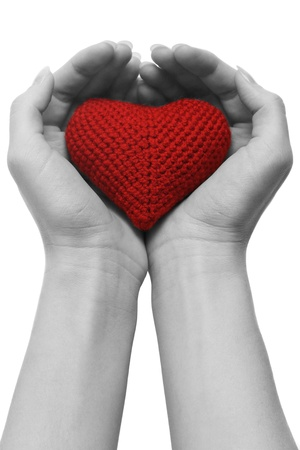 heart in cupped hands  isolated on white background