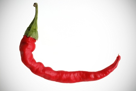 Red hot chili pepper.Isolated on white background. photo