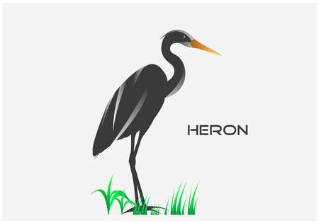 vector illustration of standing black heron isolated on white background