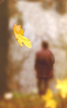 falling leaf Stock Photo
