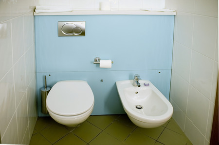 bowl sink: Equipment of the toilet room: a toilet bowl and a sink for feet