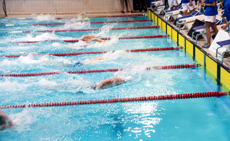 swimming competition: Swimming competitions in the pool. Swimmers on the finish.