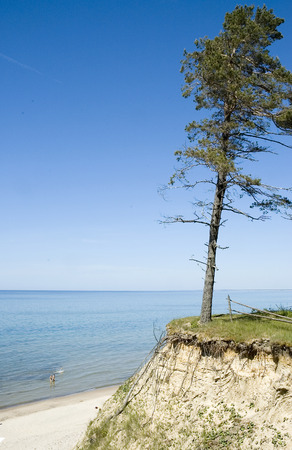 baltic sea: Europe, Baltic, Latvia. The beach and pine over a steep on the bank of the Baltic Sea. Stock Photo