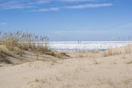 Latvia.  Dunes in the early spring in Jurmala on the coast of the Gulf of Riga Stock Photo