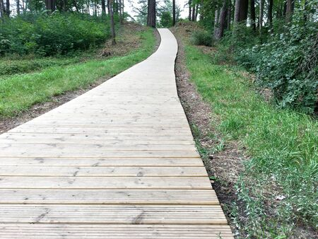 Latvia, Jurmala. Wooden path leading through the dune to the sea