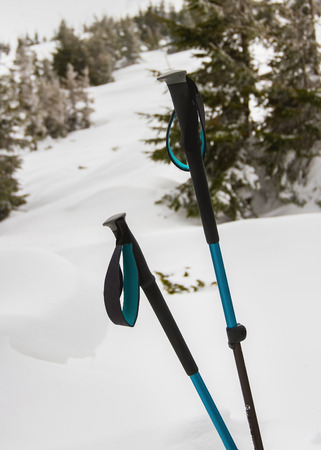 vertex: Two hiking sticks stand against the backdrop of the mountain and the fir trees.