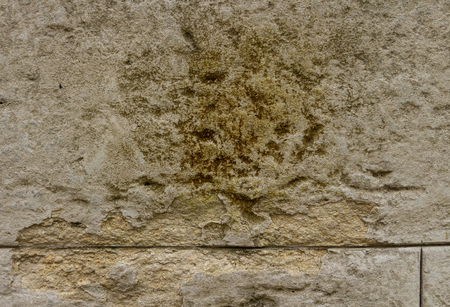 The fragment of the old wall is covered with beige plaster and fungus on the plaster. Фото со стока