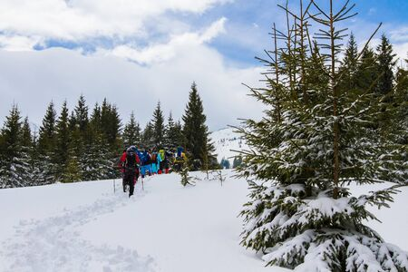 A group of people climbs the path to the top of the hill. Archivio Fotografico - 137593288