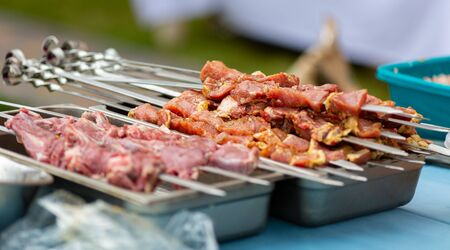 meat put on skewers lies in bowls before cooking meat over a fire 스톡 콘텐츠
