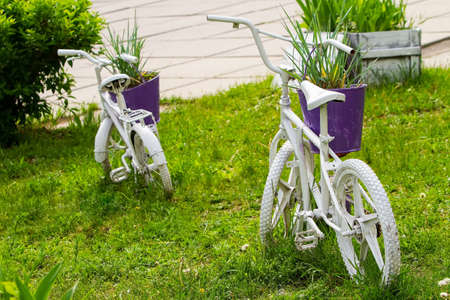 old children's bicycles are painted white and used in the street flowerbed as a flower pot holder. reuse of things, the second life of a bicycle.