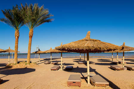 deserted empty beach, sun loungers and umbrellas on the shores of the Red Sea, evening, winter Sharm El Sheikh, Egypt