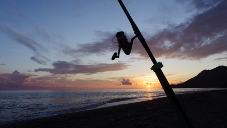 Fishing rod silhouette on the beach at sunset photo