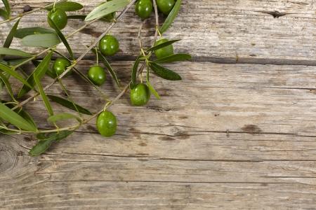 rama de olivo: Rama de olivo verde en la mesa de madera Foto de archivo