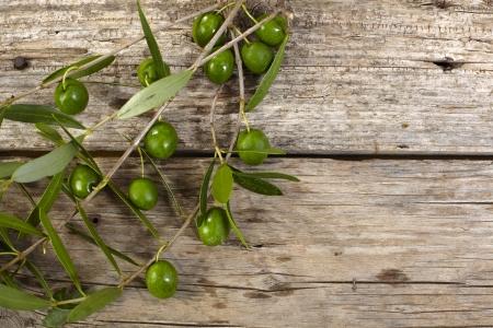 木製のテーブルの上の緑のオリーブの枝