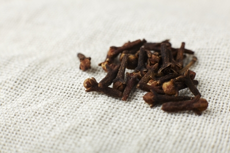 Spice cloves on a fabric close up