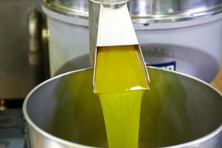 verse olie stroomt in de bak na de verwerking in de molen
