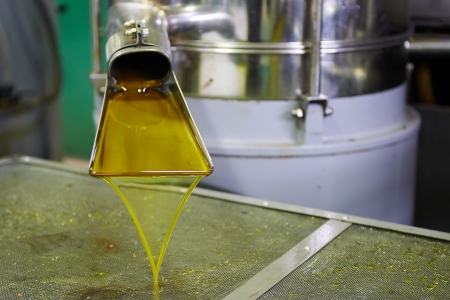 新鮮な油を工場で処理後、箱に流れる