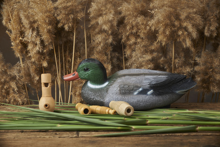 decoy: duck decoys and whistles for birds in the reeds Stock Photo