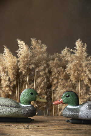 duck decoys and whistles for birds in the reeds photo