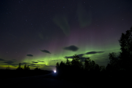 predominantly: Northern lights or polar lights. An aurora is a natural light display in the sky, predominantly seen in the high latitude Arctic and Antarctic regions.